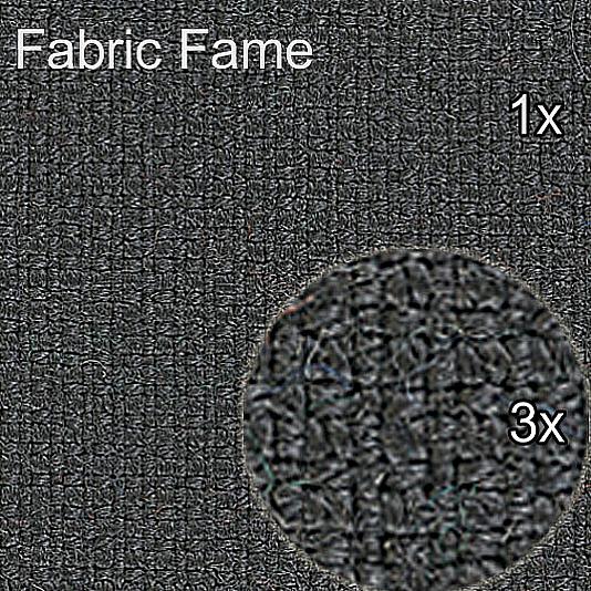 Fame_detail_structure_refine